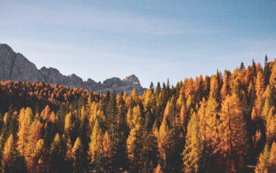 Energie besparen in de herfst: 6 tips